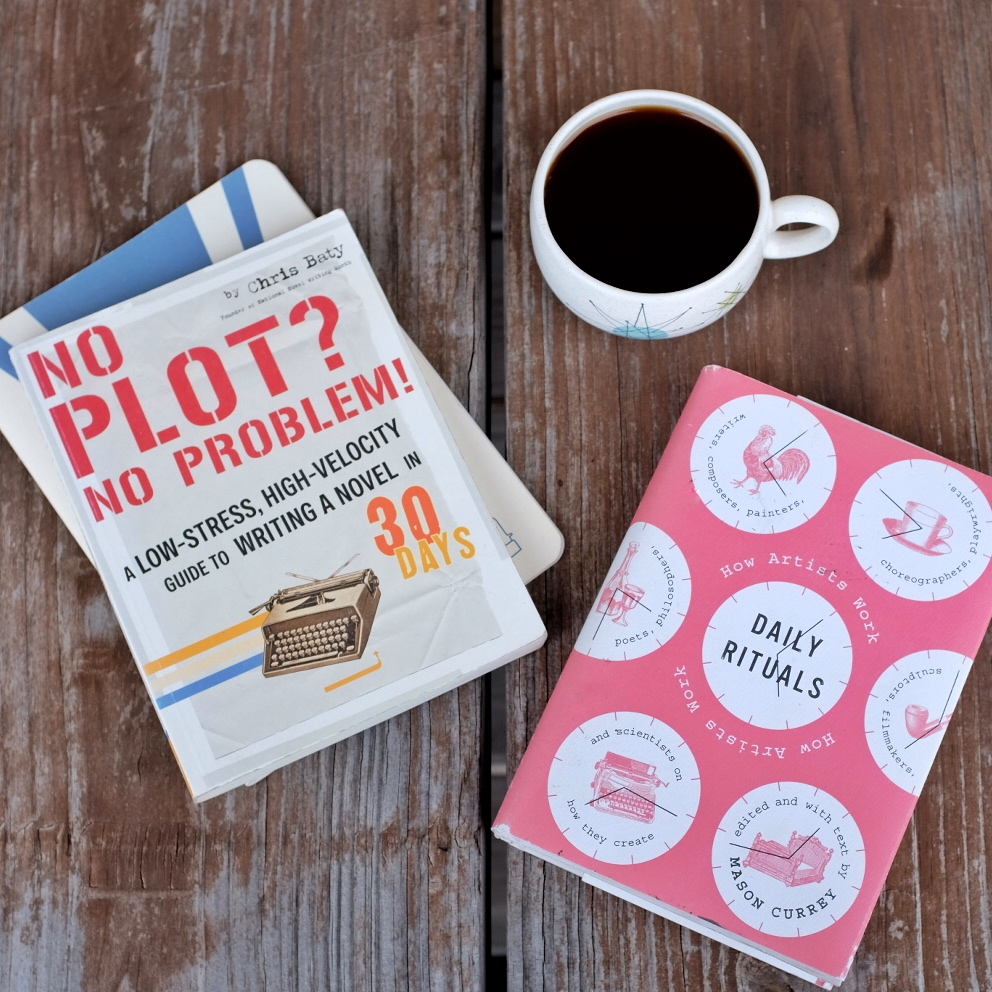 no plot no problem daily rituals books